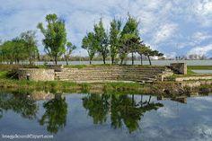 Reflexii de primavara / Spring reflections #Springreflections #reflexiideprimavara