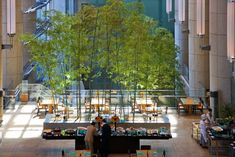 Image result for bamboo tokyo hotel Tokyo Hotels, Hangzhou, Bamboo, Street View, Outdoor Decor, Image, Home Decor, Decoration Home, Room Decor