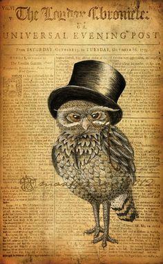 Ernest the Gentleman Owl