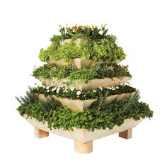 The Triolife 5-level Pyramid Planter is designed to increase the potential for growing plants and harvesting crops in small spaces, such as balconies and patios. It also makes a stunning focal point in larger yards. This  planter can allow you to grow over 3.5 times more plants per square foot. 274.95$
