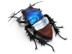 red white and blue glass beetle by Wesley Fleming