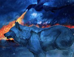 -A song of fire and ice- Drogon and Ghost from Game of thrones. I can't believe the final season,wtf . gameofthrones hbo dragon drogon ghost wolf digitalpainting illustration fanart got ice fire stark targaryen song Drogon Game Of Thrones, Arte Game Of Thrones, Game Of Thrones Artwork, Game Of Thrones Dragons, Got Dragons, Mother Of Dragons, Anime Wolf, Mythical Creatures Art, Fantasy Creatures