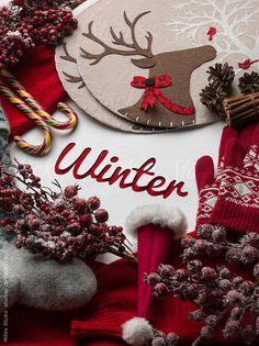 by Milles Studio - Guzi de Winter Composition .by Milles Studio Winter Compo Christmas Mood, Noel Christmas, Christmas Wreaths, Christmas Decorations, Winter Holiday, Christmas Flatlay, Christmas Crafts, Mery Crismas, Christmas Aesthetic