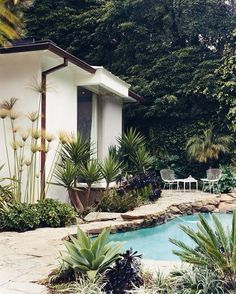 outdoor design relaxed boho mid century style pool & pool room area, paved pool surround, palm trees