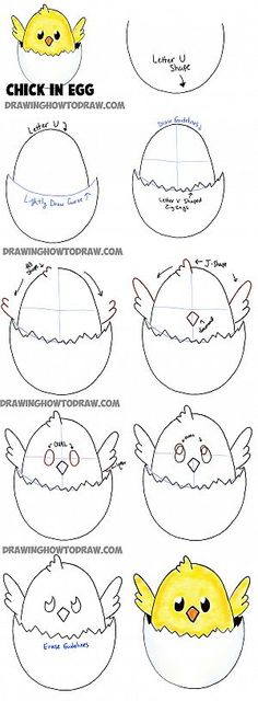 how to draw baby cartoon chicks