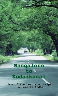 The drive from Bangalore to Kodaikanal is definitely one of the most scenic, if you are on the right path. Read to know our experience on this highway drive Travel Destinations In India, India Travel Guide, Travel Tours, Asia Travel, Travel Usa, Travel Vlog, Beautiful Places To Travel, Best Places To Travel, Cool Places To Visit