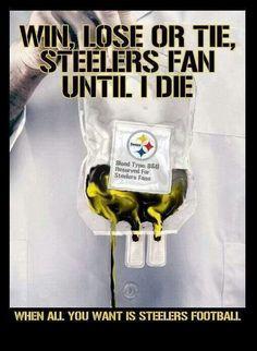 111 Best Steelers Images Go Steelers Pittsburgh