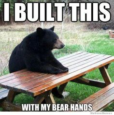 Funny bear.  See more at:http://www.hot-‐lyts.com/ for more funny quotes  #funny #quotes Memes, Funny, Black Bear, Tired Funny, American Black Bear, Wtf Funny, Meme, Hilarious, Fun