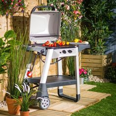 Rolling Barbecue Outdoor Meat Cooking 2-Burner Gas Trolley BBQ With Side Burner