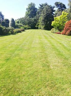 Application rates are important to successfully acheive a stunning lawn. 2 applications so far and looking better