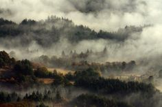 Misty Morning by ivaylo ivanov on 500px