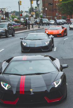 Bulls On a Parade - Lamborghini Aventador
