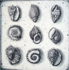 Fiona Watson - On Growth and Form  Unframed etching