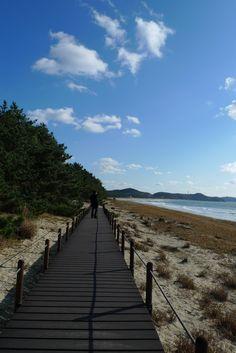 Taean-gun, Chungcheongnam-do, Korea (Haebyeon-gil) ; the seaside road, 2hrs from Seoul