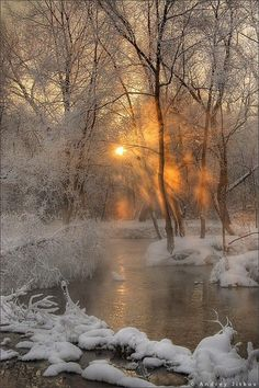 What is it about snow, sunrise, trees, and water?