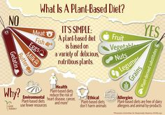 Infographic – What is a Plant-Based Diet? | Made Just Right by Earth Balance #vegan #earthbalance