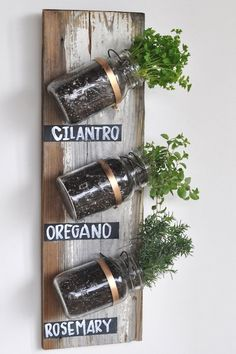 herb wall with an old wooden board, mason jars and brass ring hangers