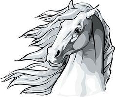 Szukaj zdjęć: koń