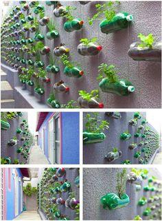 Plastic Bottle Vertical Herb Garden..so amazing and admiring