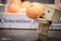 Billede fra https://jbaumgart.files.wordpress.com/2011/02/danboard_clementine.jpg.
