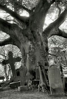 Old cemetery by ~Tanja0869 on deviantART