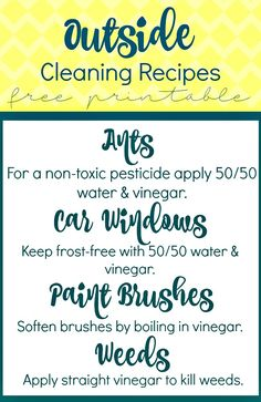 Replace toxic chemicals with vinegar using these cleaning printables for outside. White vinegar cleans, deodorizes, and disinfects. How To Dr, How To Apply, Cleaning Recipes, Cleaning Hacks, Kill Weeds With Vinegar, White Vinegar Cleaning, Sac Lunch, Vinegar Uses, Uses For White Vinegar