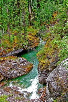 ✯ Maligne Canyon -Jasper National Park - Alberta, Canada