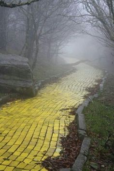 This was the yellow brick road from the Wizard of Oz theme park in North Carolina. My grandparents took me here once when I was a very little girl...