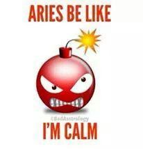 Hehe - oh dear, I need to find something good about Aries. Aries Ram, Aries And Pisces, Aries Love, Astrology And Horoscopes, Aries Zodiac, Zodiac Love, My Zodiac Sign, Astrology Signs, Aries Sign