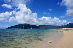 Langford Reef, the Whitsundays. www.parkmyvan.com.au #ParkMyVan #Australia #Travel #RoadTrip #Backpacking #VanHire #CaravanHire