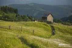 Romania, Cabin, House Styles, Home Decor, Paisajes, Homemade Home Decor, Cabins, Cottage, Decoration Home