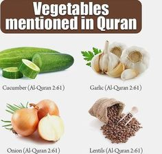 Sunnah recommended food in Pregnancy - Islam Hashtag Islam Hadith, Islam Muslim, Allah Islam, Islam Quran, Alhamdulillah, Islam Religion, Learn Quran, Learn Islam, Islamic Love Quotes