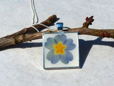 Primula on White/ Real flower in resin necklace from AstroScent by DaWanda.com