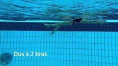 10 exercices de natation