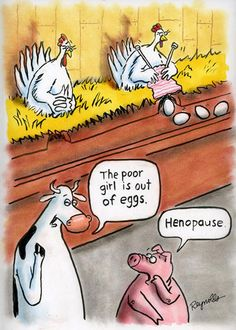 Henopause-these cartoons are funny in a sarcastic kind of way!! Human behaviors are quite like chickens!!