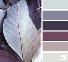 Leaf tones An idea of a cool or cold colour palette that can appropriately reflect a feeling of cold, freezing or even pain.
