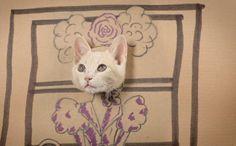 猫ダンボール - Google 検索