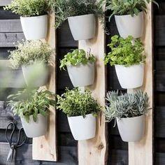 KARWEI   Deze verticale (kruiden)tuin maak je zelf!