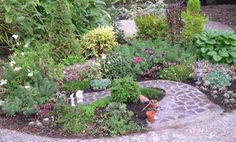Living Miniature Garden with Stone Pathway
