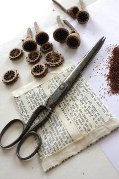 seed envelope   // Great Gardens & Ideas //