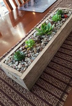 15 Amazing Ideas Adding River Rocks To Your Home Design PAGUPONKU is part of House plants decor - We can see some of the homes which have amazing ideas Those ideas are using adding river furniture Succulent Gardening, Garden Terrarium, Succulent Planters, Diy Planters, Succulents In Containers, Planting Succulents, Indoor Garden, Indoor Plants, Wooden Box Centerpiece