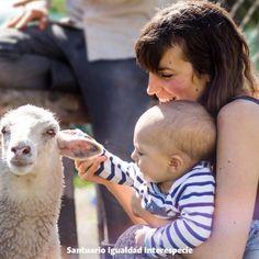 Los niños de hoy son quienes tomarán las decisiones importantes en el futuro. Enseñarles desde pequeños a ser respetuosos y cariñosos con los animales es sembrar las semillas de un mundo mejor para todos . -- #baby #educationiskey #animalrights #vegan #vegansofig #animalrescue #sheep #cute #love #kindness #vegetarian