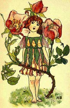 A Flower Book: Dumpy Books for Children No. 7  Coybee, Eden (Nellie Benson, illustrator)