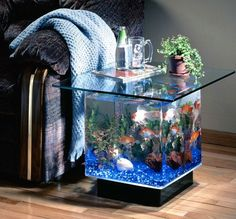 If you loved the 25 Gallon Coffee Table Aquarium but are a bit hesitant because you were in need of something that is that bit smaller then you are going to absolutely love this. Here it is, the smaller 15 Gallon Coffee table aquarium! Aquarium Terrarium, Table Aquarium, Aquarium Mini, Tropical Aquarium, Aquarium Fish Tank, Aquarium Stand, Aquarium Lamp, Aquarium Photos, Aquarium Garden