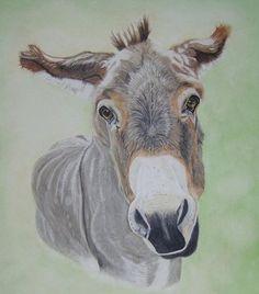 donkey-painting-artwork (22)