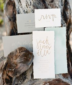 love the font and the style for invites and menus etc.