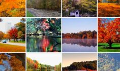 Fall Foliage Off-the-beaten-path | Massachusetts Foliage | Travel | MassFinds