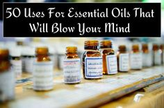 11. Dissolve Stubborn Substances like wax, oil, chewing gum, or glue with Lemon oil. 12. Scrub Sinks with a mixture of Bergamot and Lime oils diluted in water. 13. Scent Your Vacuum Bag by dousing a cotton ball with your favorite essential oil and dropping it into the vacuum bag or filter. 14. Wash Fruit and preserve its freshness with Grapefruit oil. 15. Repel Spiders…   [read more]