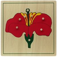 parts of a flower puzzle $9