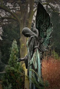 """sixpenceee: """"Angel of the Forest. This statue is can be found in Ozark, Missouri. (Source) """" sixpenceee: """"Angel of the Forest. This statue is can be found in Ozark, Missouri. Cemetery Angels, Cemetery Statues, Cemetery Art, Weeping Angels, Angels Among Us, Angels And Demons, Statue Ange, Angeles, Old Cemeteries"""